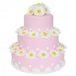 Торт детский в три яруса светло-розовый с множеством ромашек