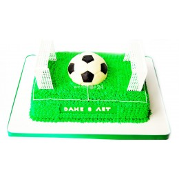 Торт праздничный на чемпионат мира в форме футбольного поля
